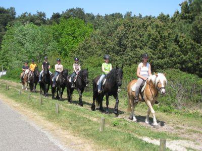 volop gelegenheid tot paardrijden